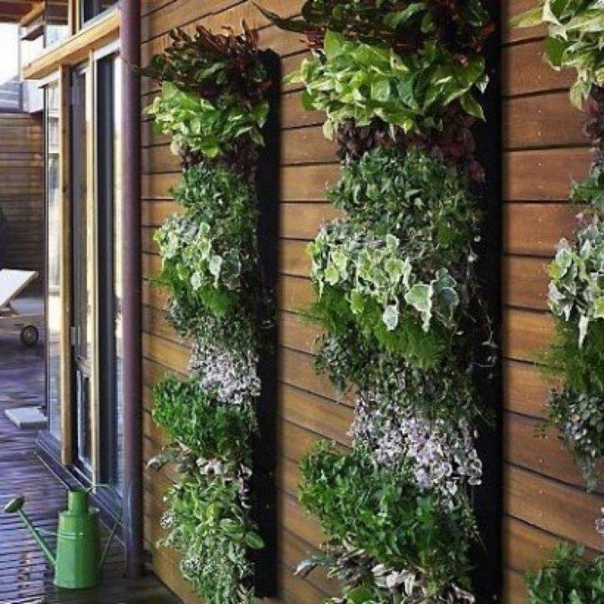 vertical-planting.-675x675 100+ Surprising Garden Design Ideas You Should Not Miss in 2021