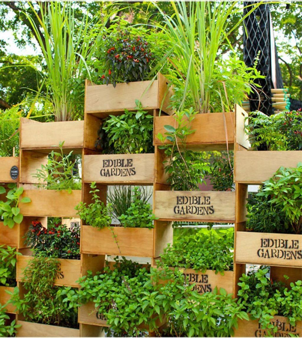 vertical-planting..-1-1024x1146 100+ Surprising Garden Design Ideas You Should Not Miss in 2021