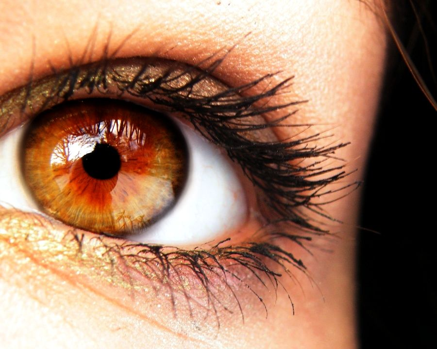 Amber-color 7 Rarest and Unusual Eye Colors That Looks Unreal