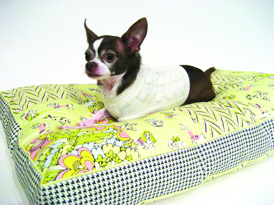 Colorful-bed.-2 +80 Adorable Dog Bed Designs That Will Surprise You