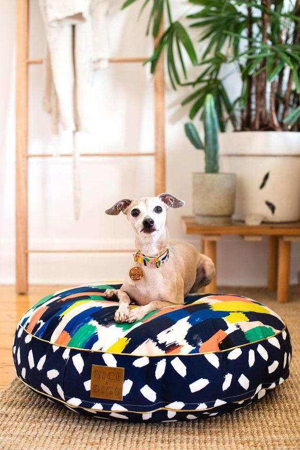 Colorful-bed. +80 Adorable Dog Bed Designs That Will Surprise You