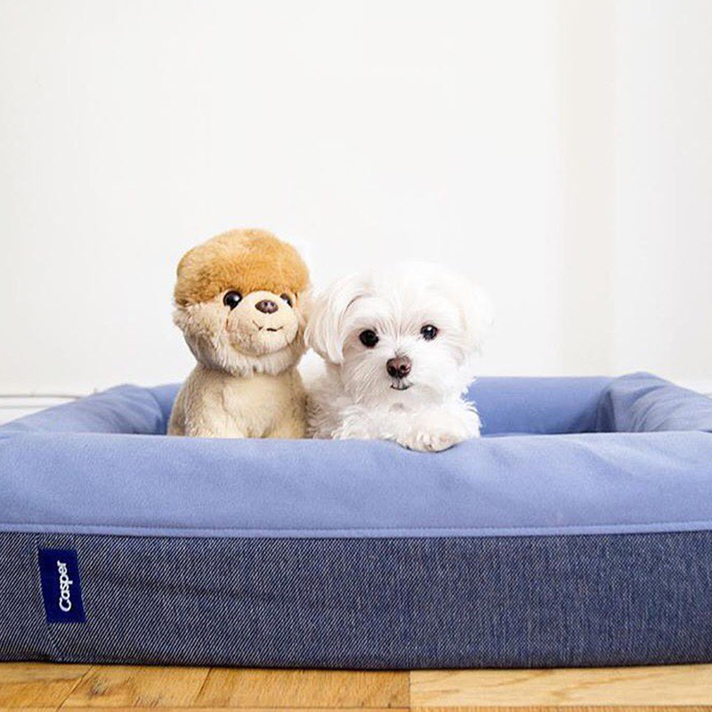 Dog-mattress. 10 Unique Luxury Gifts for Dogs That Amaze Everyone