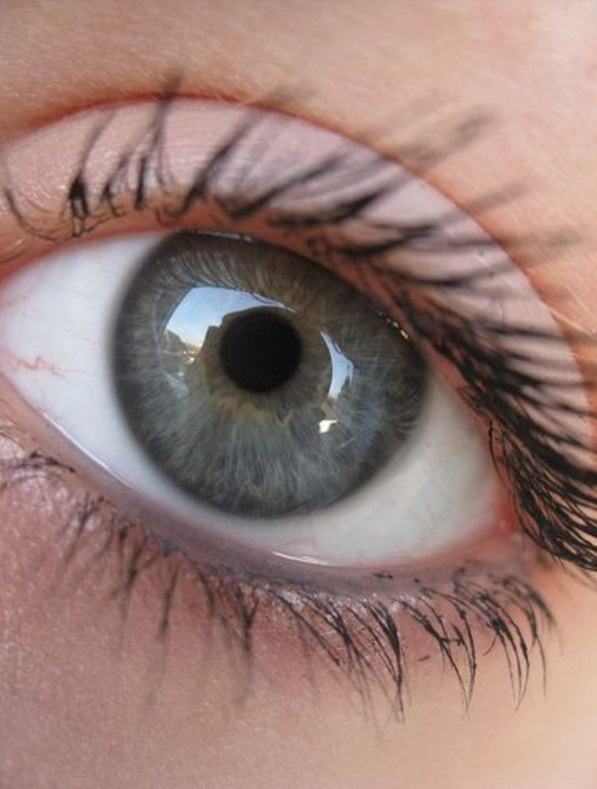 Grey-2 7 Rarest and Unusual Eye Colors That Looks Unreal