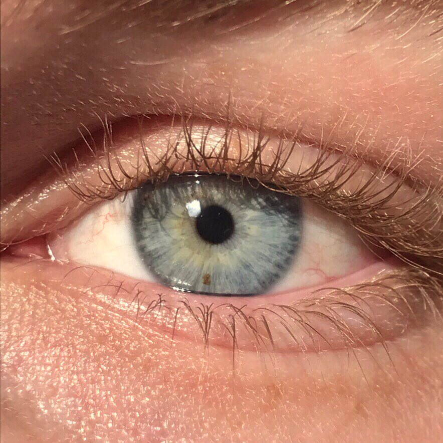 Grey 7 Rarest and Unusual Eye Colors That Looks Unreal