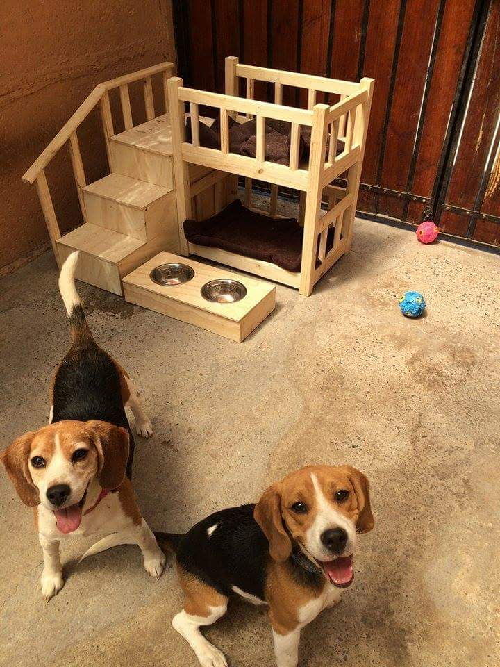 Ladder-bed.-1 +80 Adorable Dog Bed Designs That Will Surprise You