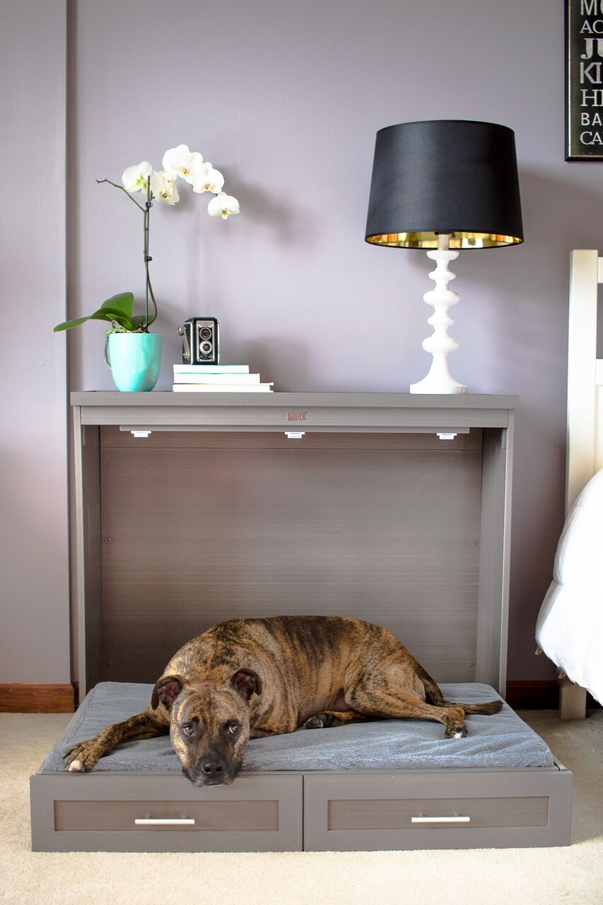 Murphy-bed. +80 Adorable Dog Bed Designs That Will Surprise You