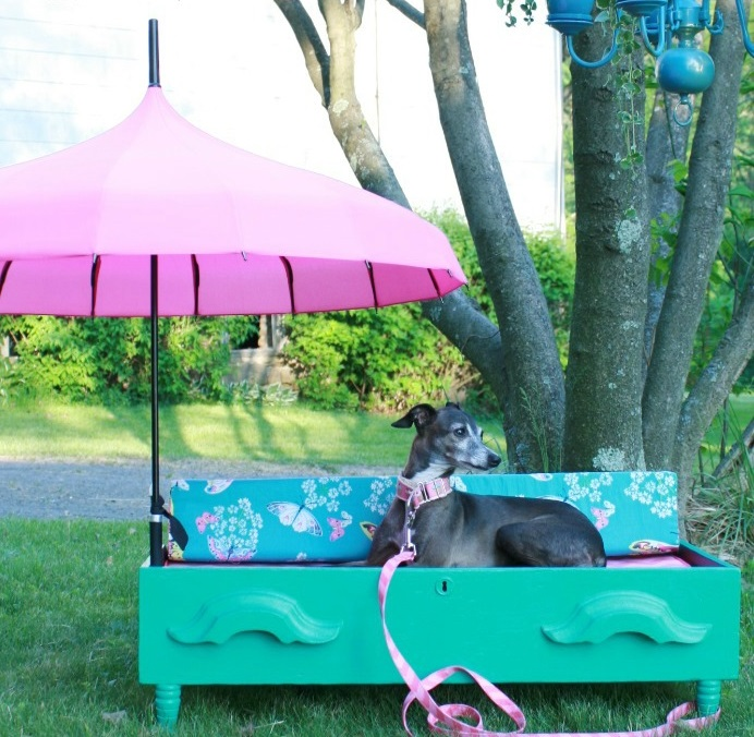 Pet-Bed +80 Adorable Dog Bed Designs That Will Surprise You