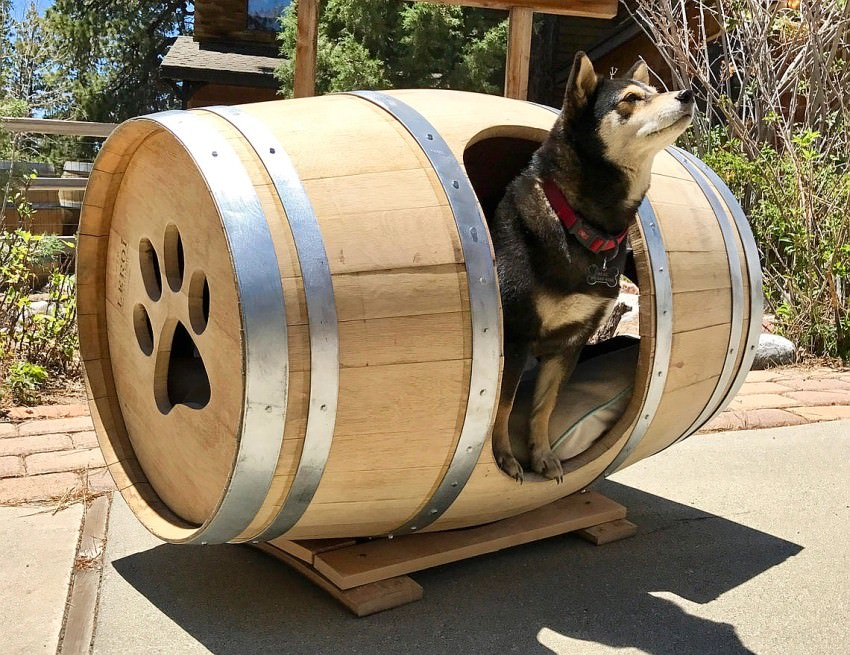 Wine-barrel-bed +80 Adorable Dog Bed Designs That Will Surprise You