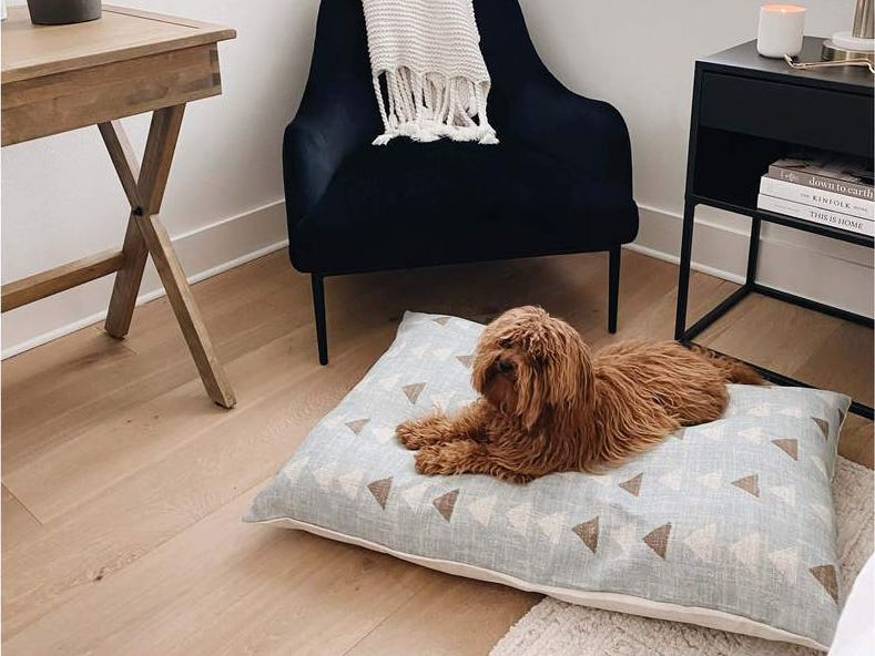 bed-cover 10 Unique Luxury Gifts for Dogs That Amaze Everyone