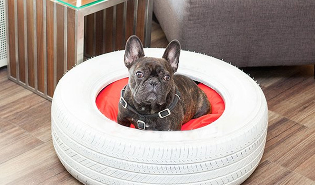 bed-tire-1 +80 Adorable Dog Bed Designs That Will Surprise You