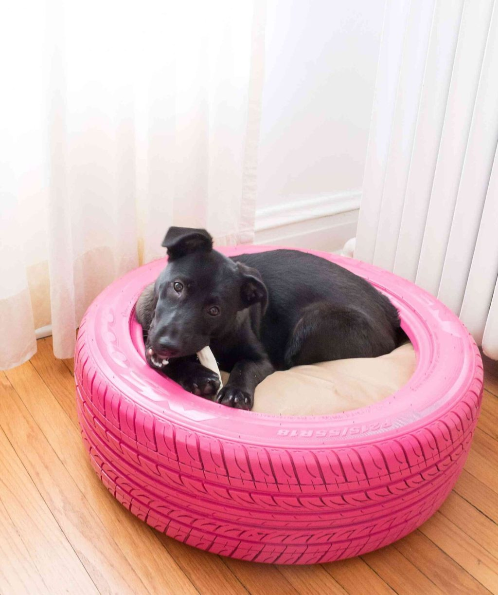 bed-tire.-1024x1222 +80 Adorable Dog Bed Designs That Will Surprise You