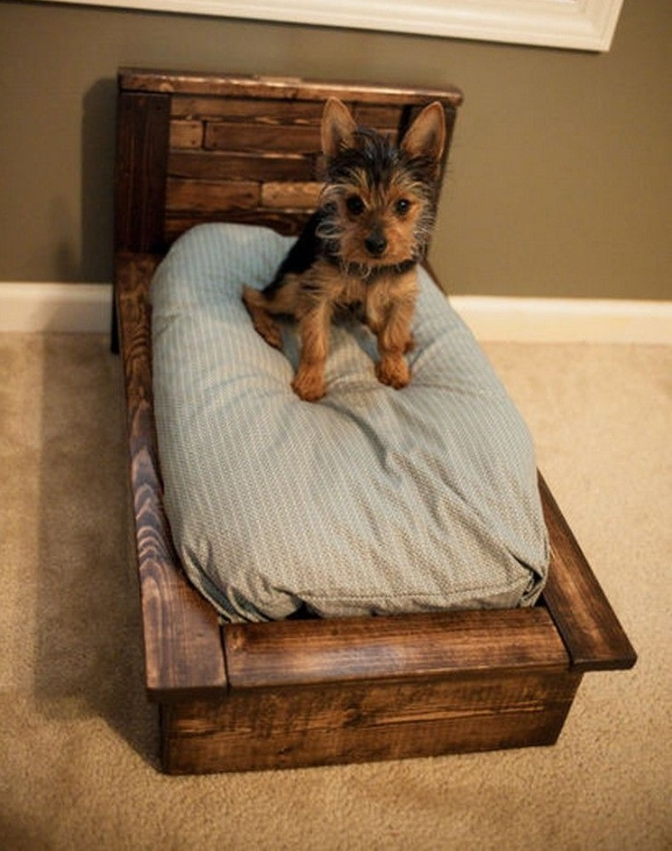 mini-pallet-bed +80 Adorable Dog Bed Designs That Will Surprise You