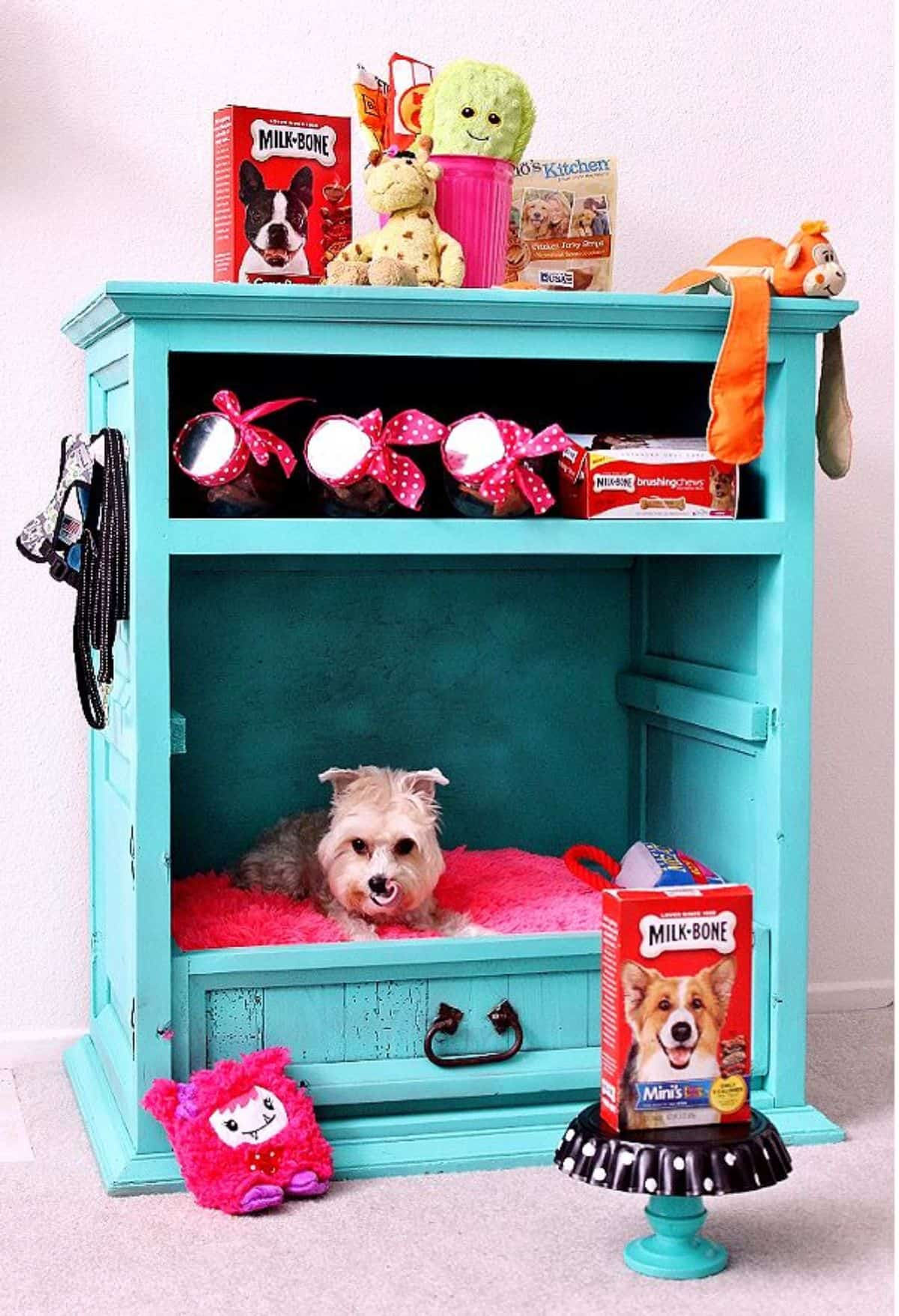 used-closet.-3 +80 Adorable Dog Bed Designs That Will Surprise You