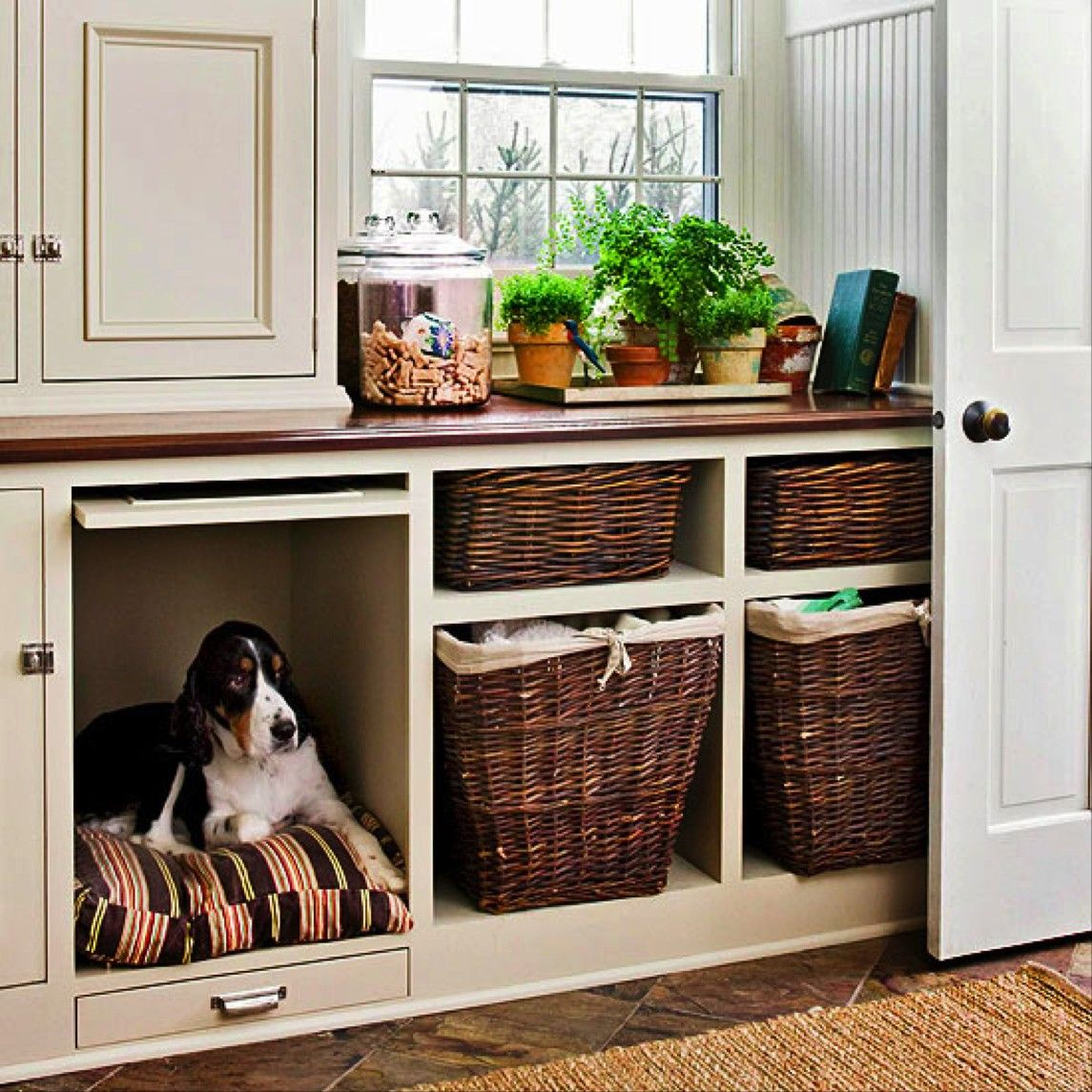 used-closet +80 Adorable Dog Bed Designs That Will Surprise You