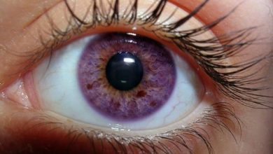 violet-eye-color-390x220 Top 10 Wedding Photographers in The USA for 2020