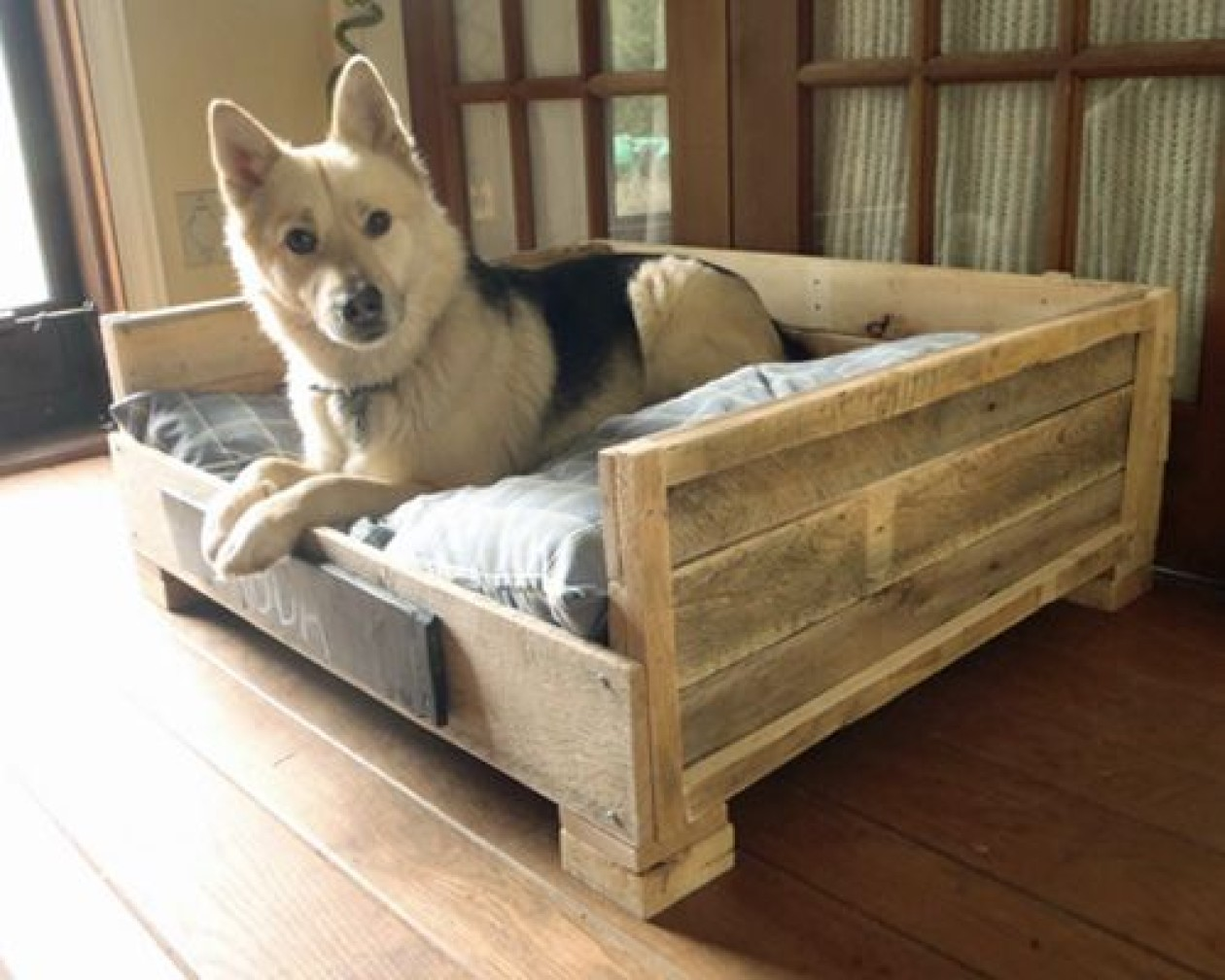 wooden-pallet-2 +80 Adorable Dog Bed Designs That Will Surprise You