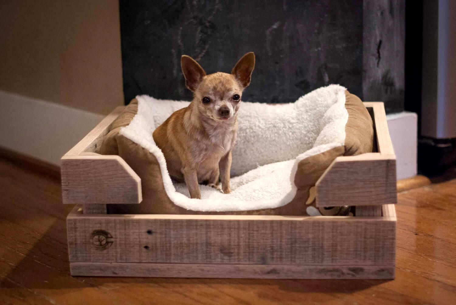 wooden-pallet.-1 +80 Adorable Dog Bed Designs That Will Surprise You